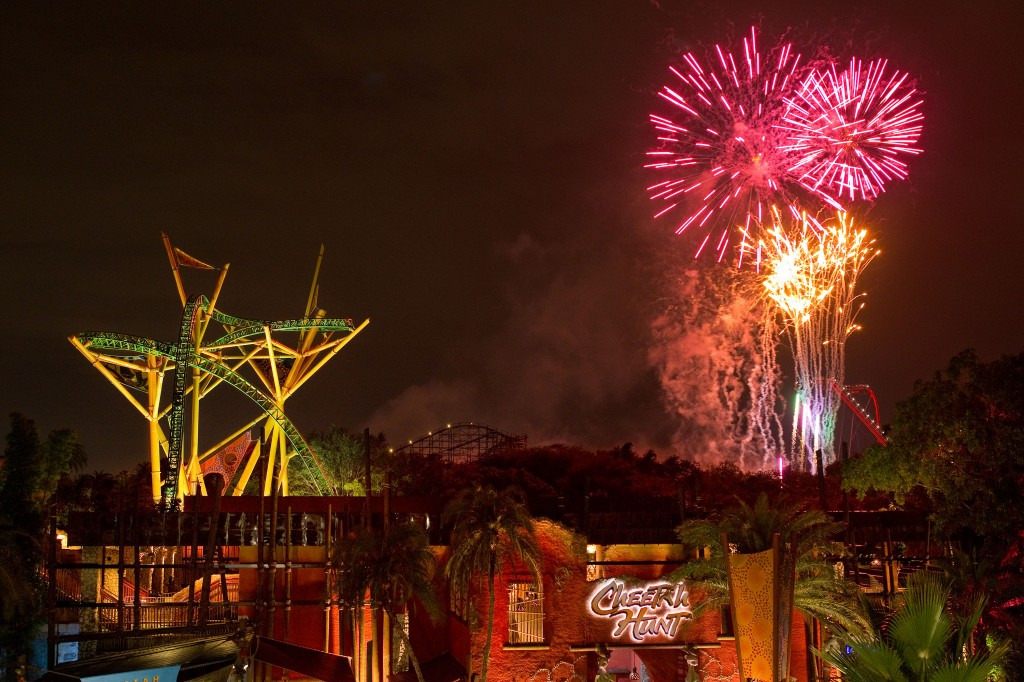 Cheetah Hunt Fireworks