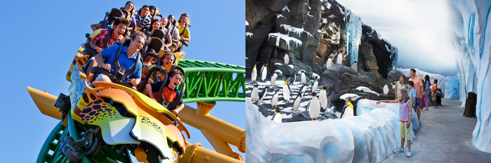 Behind The Thrills Seaworld And Busch Gardens Introduce A 50 Weekday Ticket For U S Residents