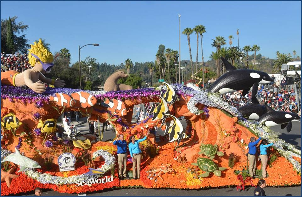 Photo courtesy of the SeaWorld San Diego Facebook page