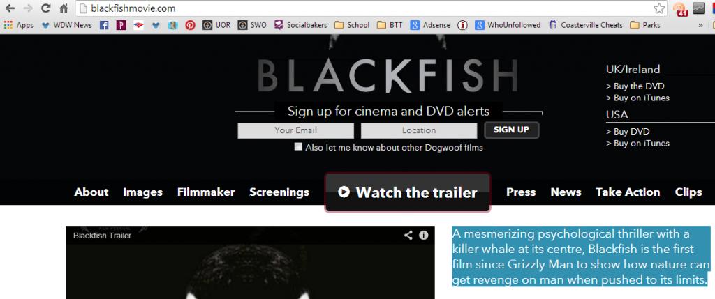 bfwebsite