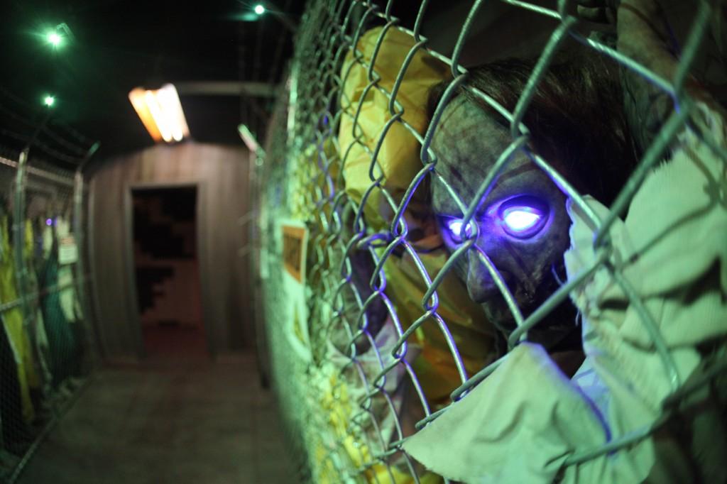 Zombie Fences Close-Up
