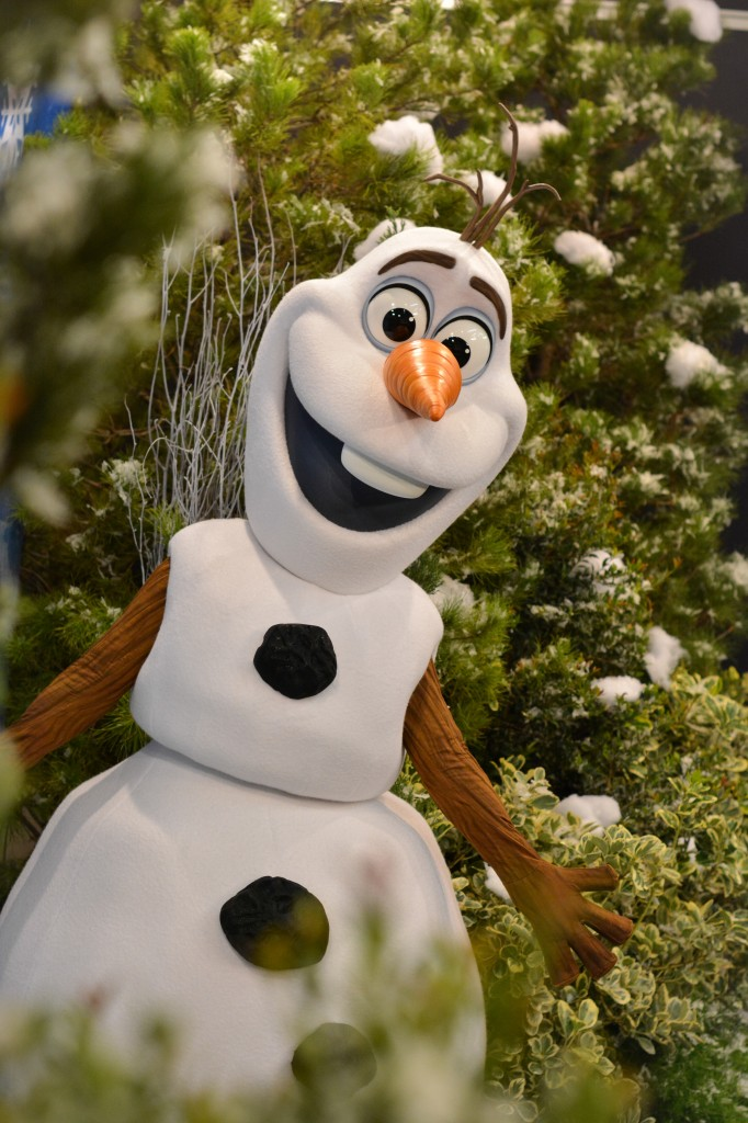 Olaf-All-Parks-Use