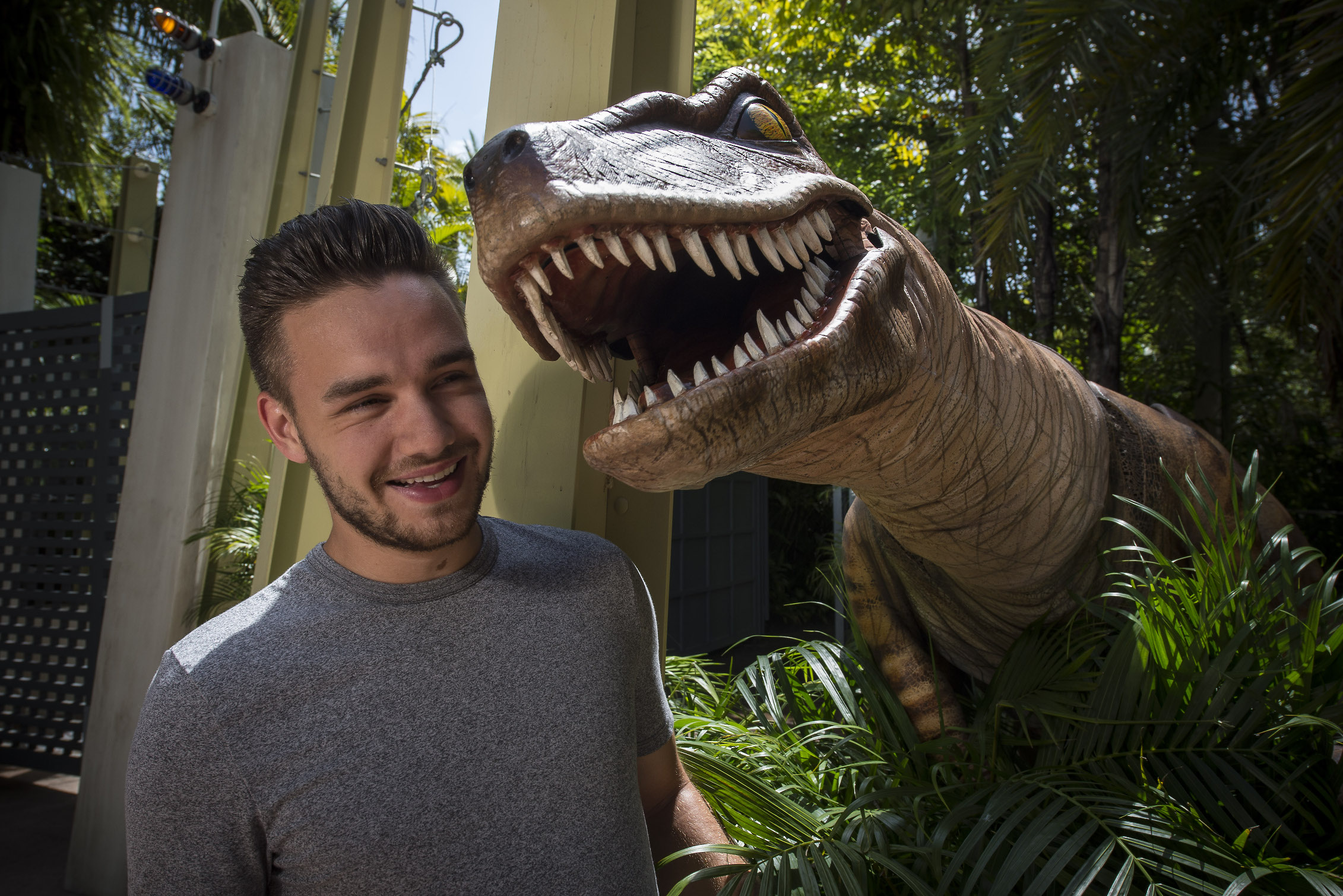 Publicity, Liam Payne, One Direction, Raptor