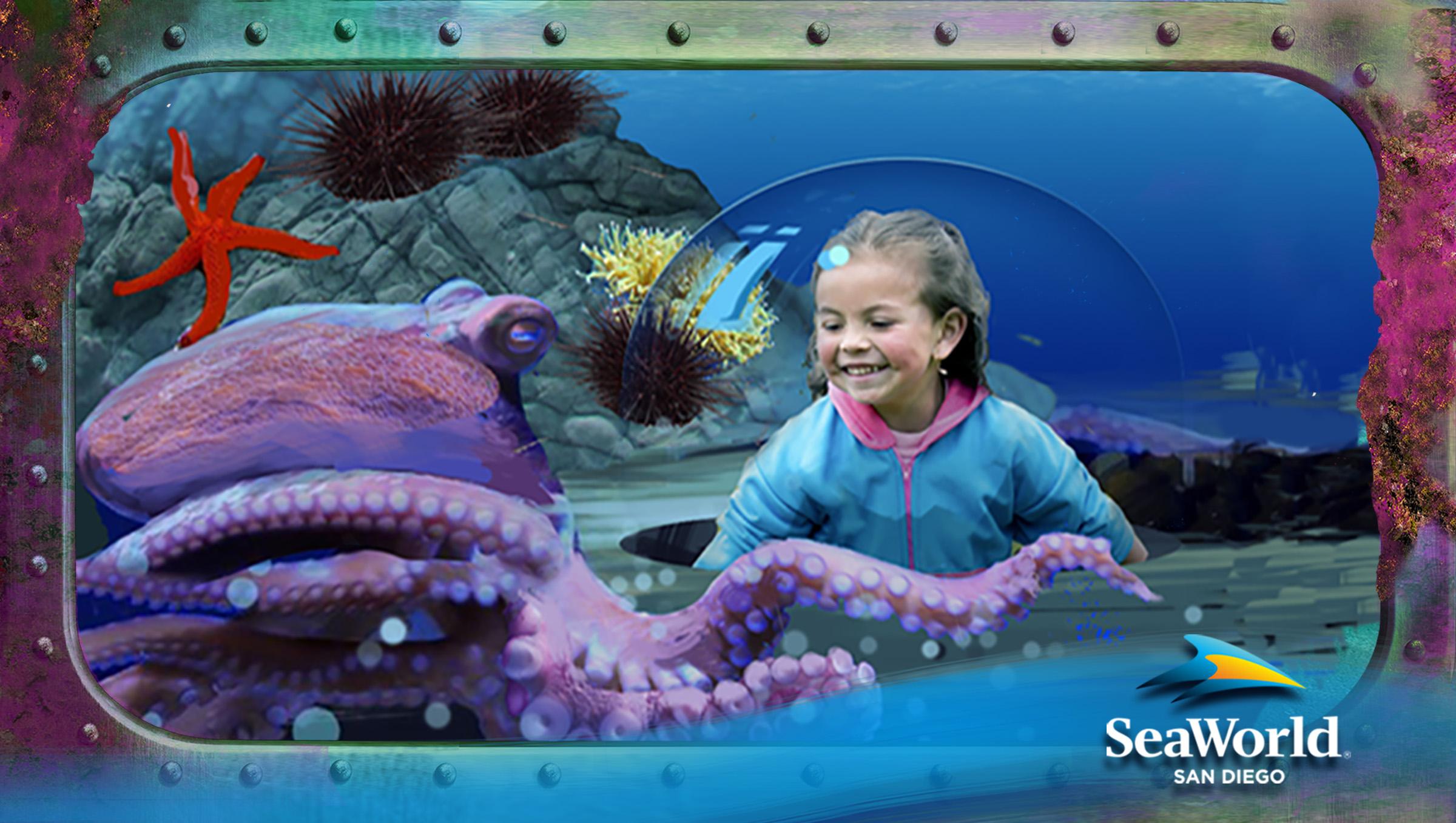 Ocean Explorer - Octopus (1)